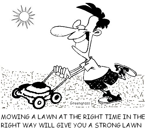 greengrass lawn cartoons, green grass, greengrass