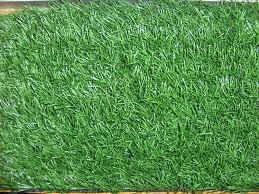 Artificial Lawns in Spain. Artificial lawns. Artificial grass.